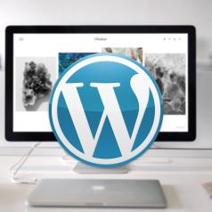 Curso online de Wordpress - creación de Blogs (30h)